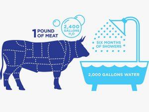et endüstrisinin su tüketimine etkisi